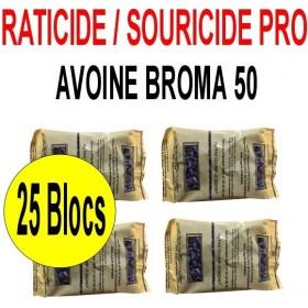 "AVOINE DECORTIQUEE ""BROMA 50"" 1 Kg"